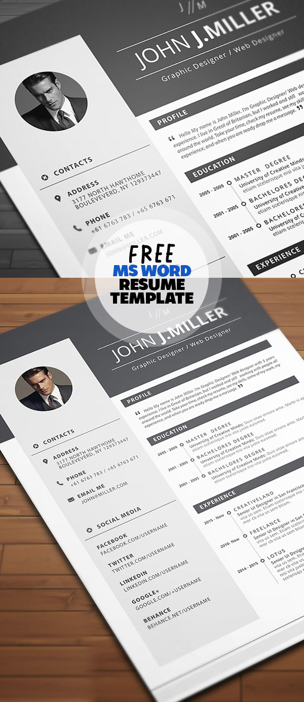 50 Free Resume Templates: Best Of 2018 -  40