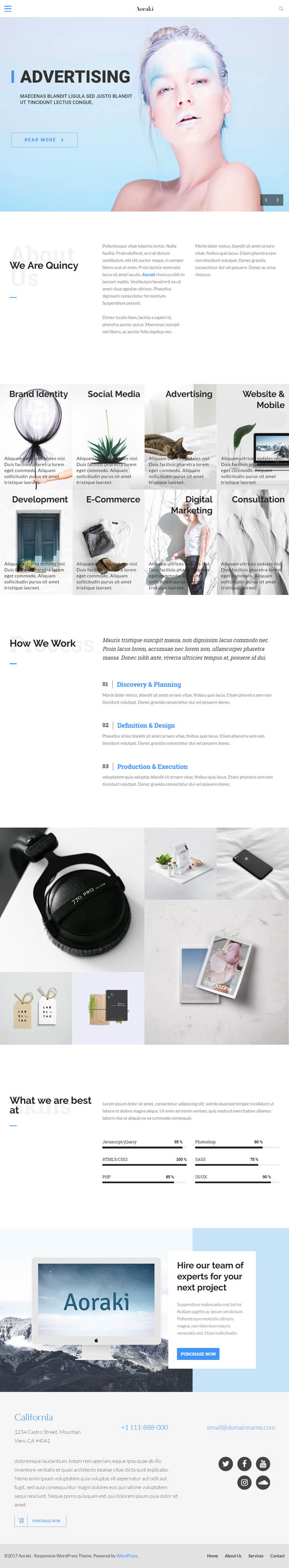 Aoraki : Multi-Concept Business WordPress Theme