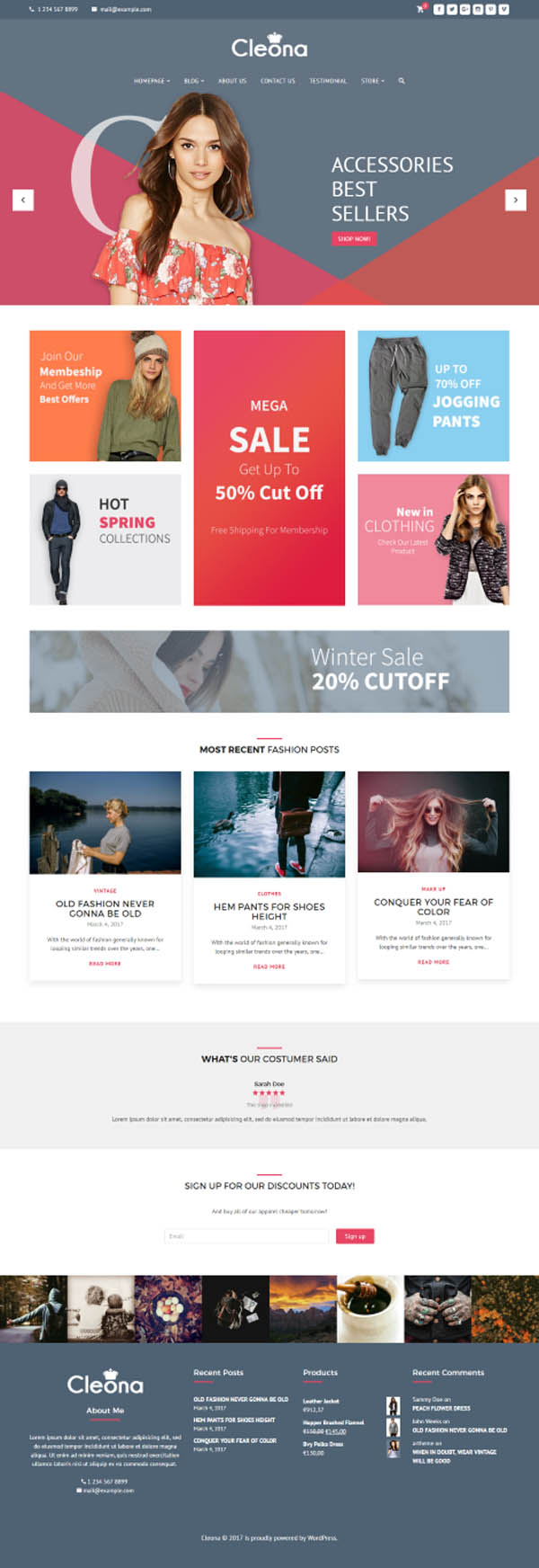 Cleona : Responsive E-Commerce WordPress Theme