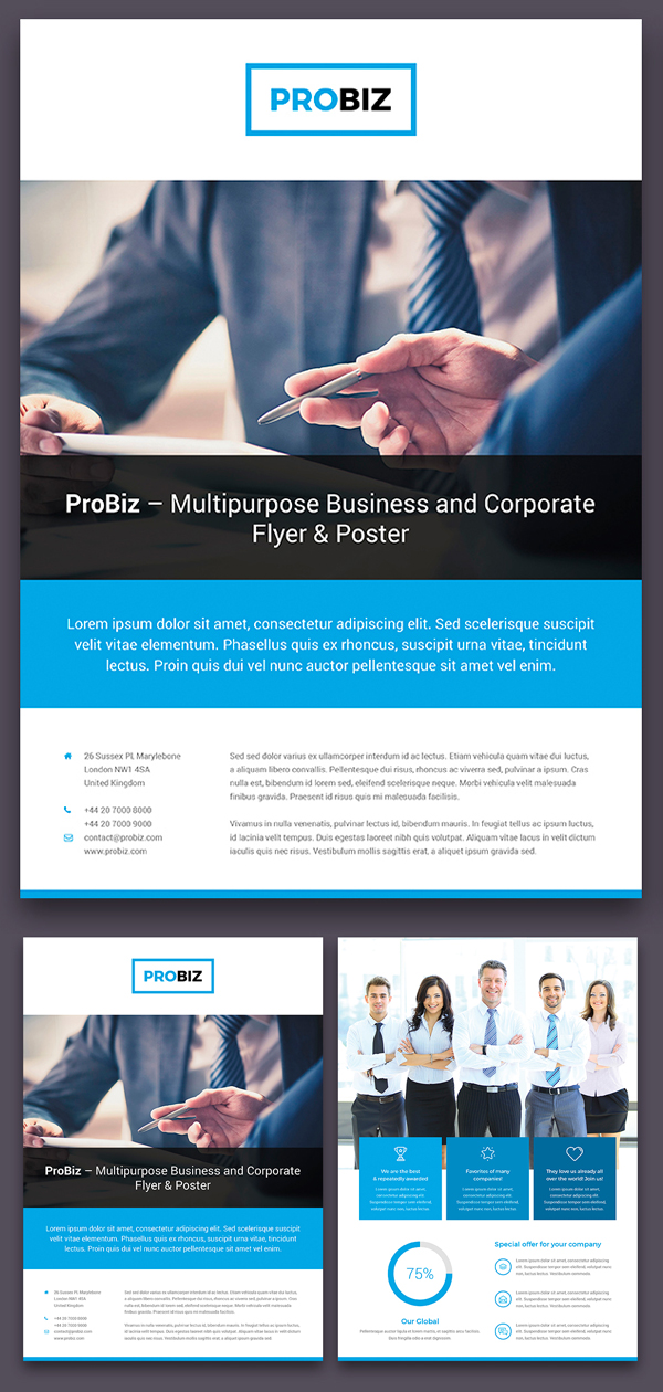 ProBiz – Business and Corporate Flyer Double Sided