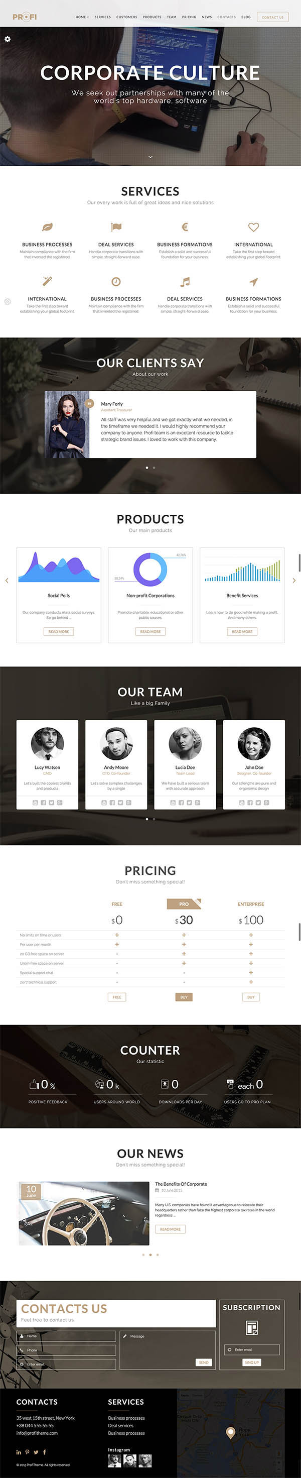 Profi : Multipurpose Corporate WordPress Theme