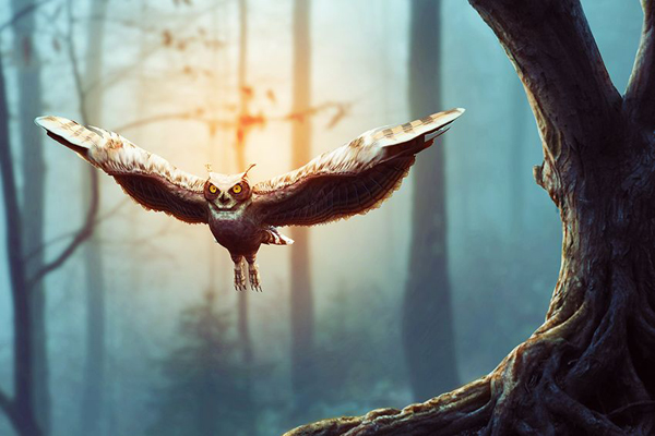 36 Extremely Creative Photos and Photo Manipulation Examples
