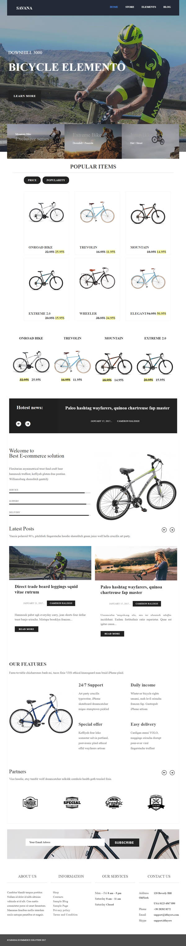 Savana - Multi Concept Responsive eCommerce WordPress Theme