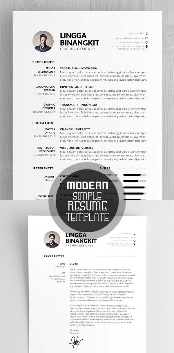 Best Modern Resume Template 3