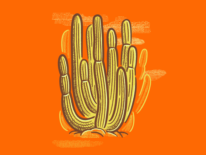 How to Make a Hand Drawn Cactus in Illustrator