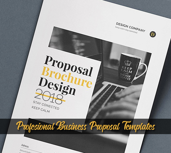 Business proposal brochure templates design graphic design junction 18 professional business proposal brochure templates cheaphphosting Images