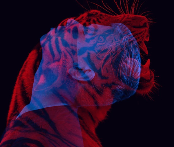 How to Create Animal Double Color Exposure in Photoshop