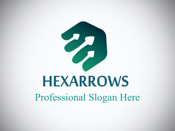 Hexaarrow Logo Design
