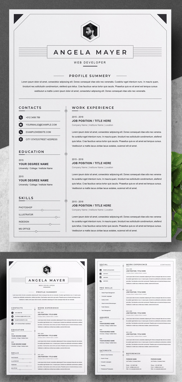 Clean and Professional Resume / CV