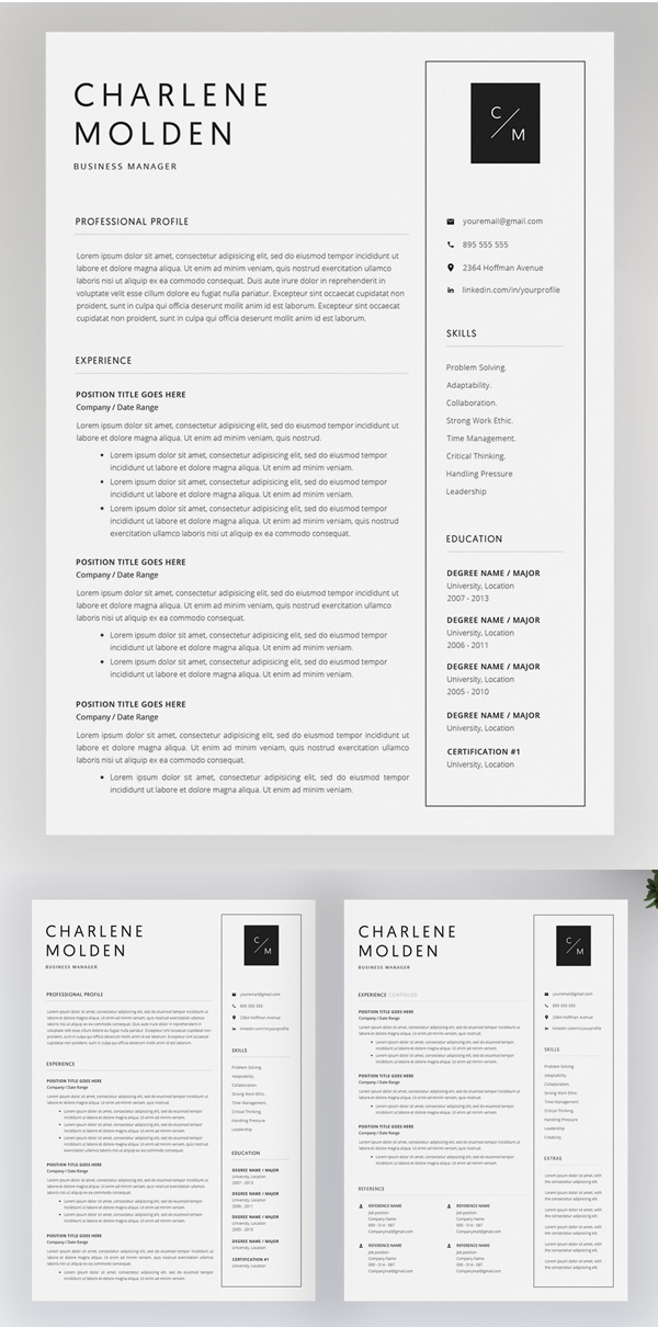 professional cv    resume templates with cover letters