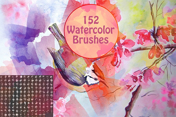Elegant Watercolor Brushes
