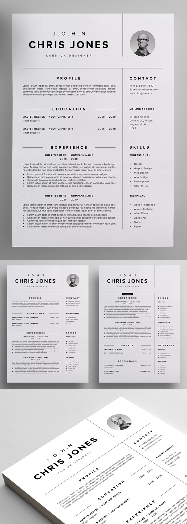 Professional Resume CV