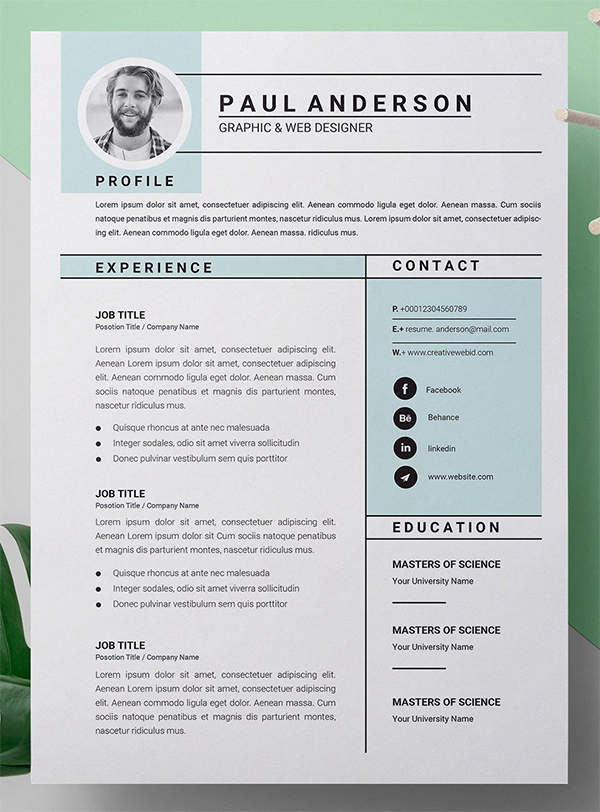 Microsoft Word Resume / CV