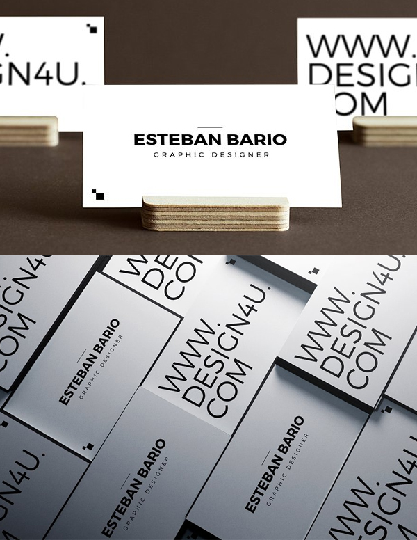 Simple Website Business Card Template