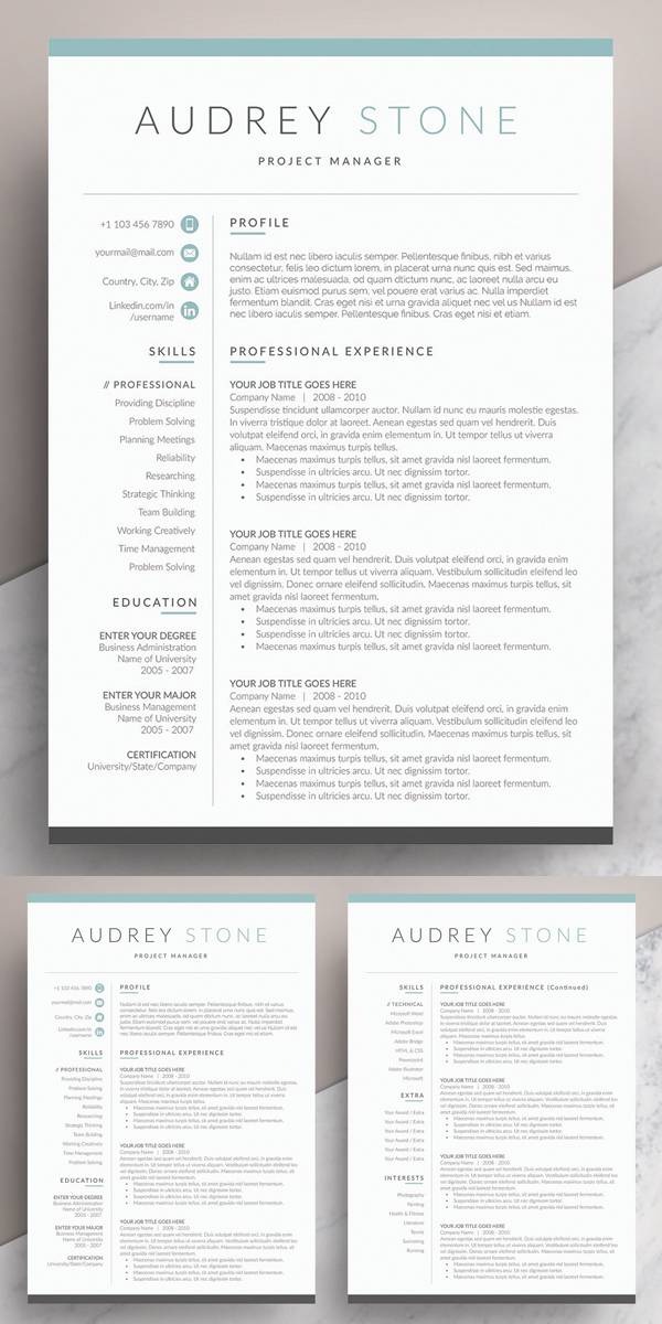 Clean Word Resume