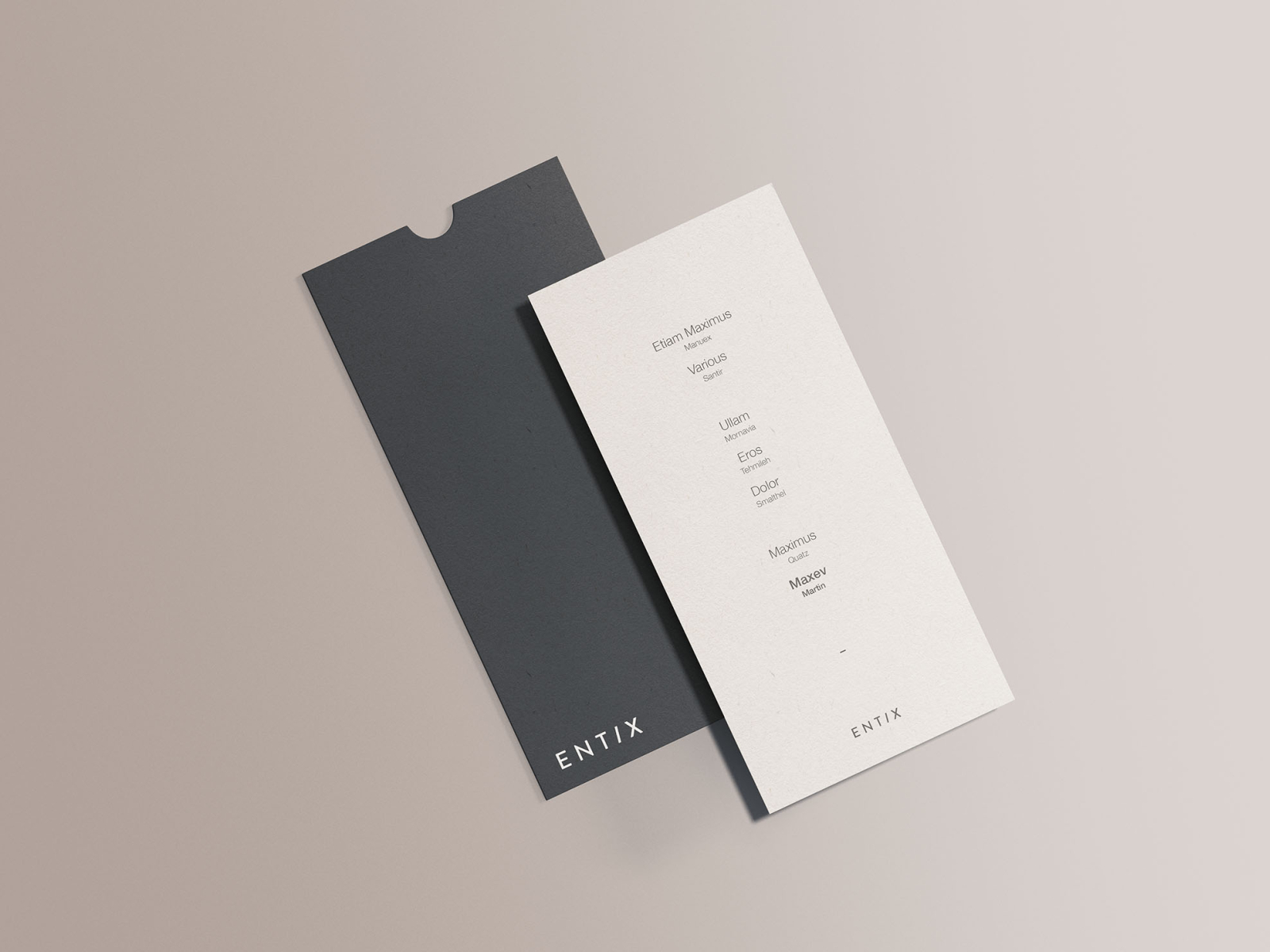 Free DL Vertical Flyer Mockup