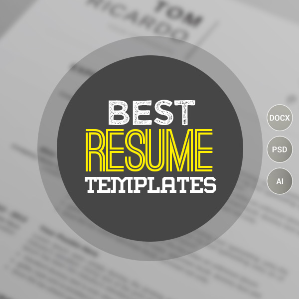 15 Best Resume Templates For Every Job Type