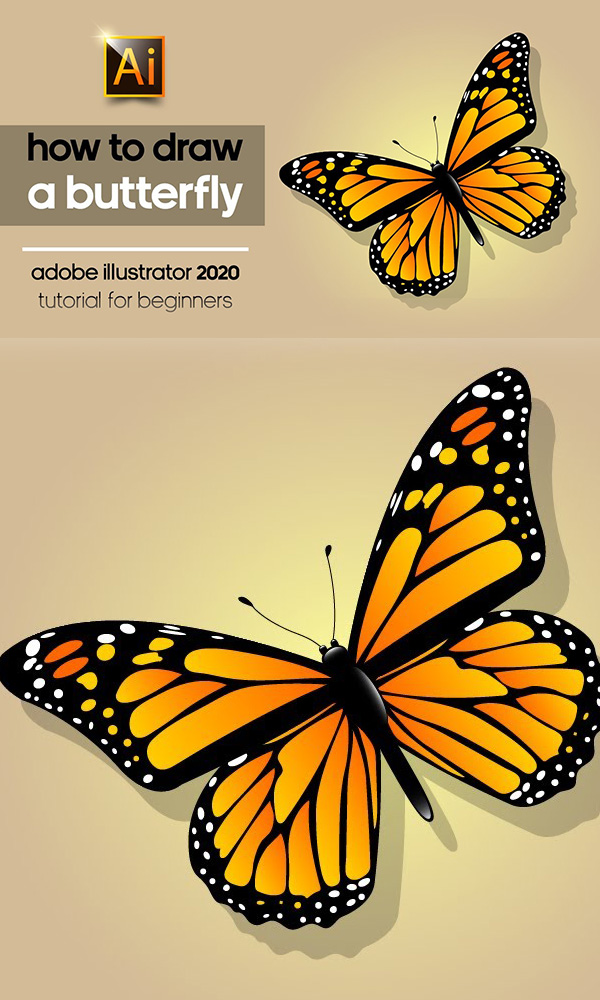 How to Draw a Beautiful Butterfly in Adobe Illustration 2020