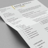 Post Thumbnail of Free Simple Resume Template with Cover Letter + Business Card (PSD)