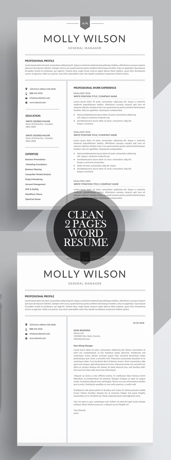 Clean 2 Page Word Resume Template