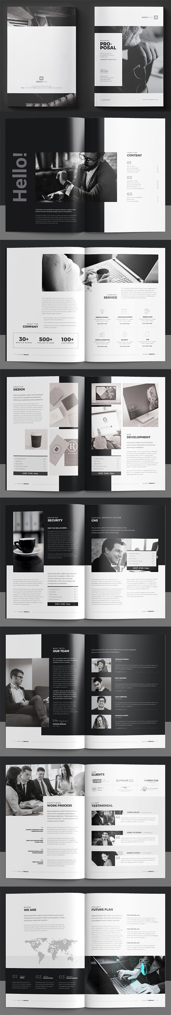 Perfect Company Profile Brochure