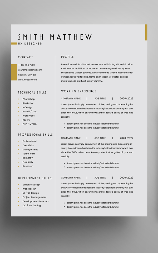 Free 2 Pages CV Resume Template