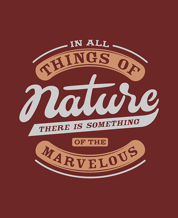 In All Things of Nature - Hand Lettering Quote