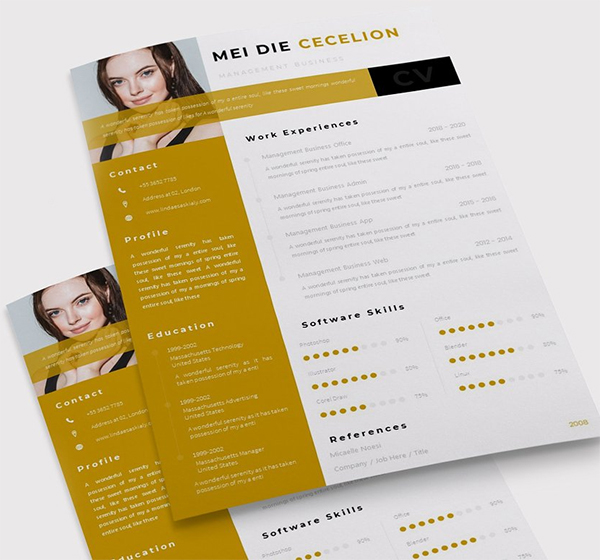 Moodest | CV & Resume