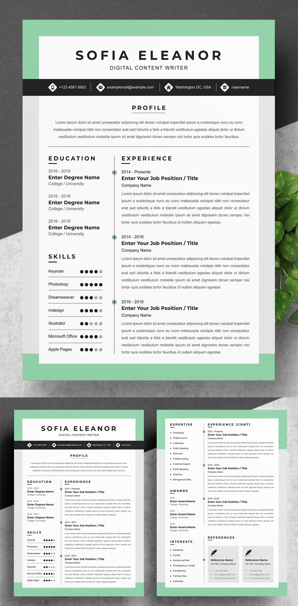 50 Best Resume Templates Of 2020 - 3