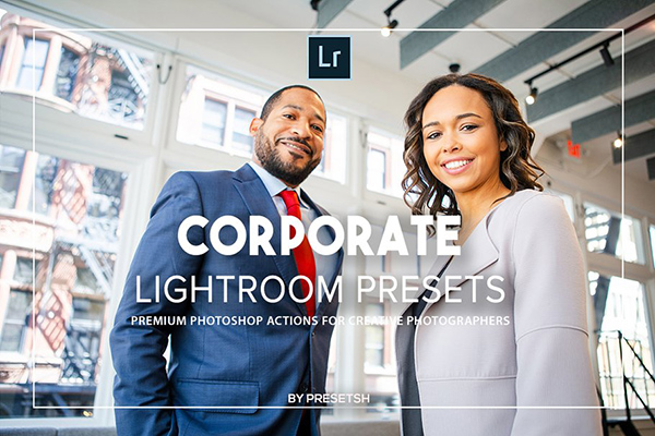 Corporate Lightroom Presets